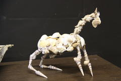 Horse from Shells